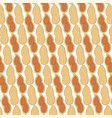 background pattern with peanut in shell vector image