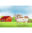 A cow in the farm with a wooden house at the back vector image vector image
