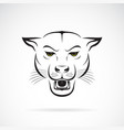 an angry panther head on white background wild vector image