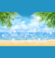 beach with palm trees and highlights background vector image vector image