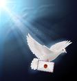 Dove white vector image vector image