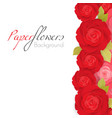 paper flower background with red roses with green vector image vector image