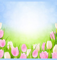pastel spring tulips border vector image vector image