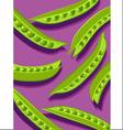 peas on purple vector image
