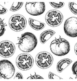 tomato seamless pattern drawing Isolated vector image vector image