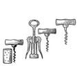 wing corkscrew basic corkscrew and cork vector image