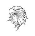 eagle head logo template vector image