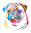 colorful decorative portrait of dog pug vector image vector image