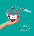 donate blood campaign vector image vector image
