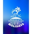 Enjoy the Summer Holidays poster design vector image vector image