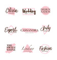 pink brush logo type collection vector image vector image
