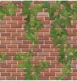 Brick and ivy texture vector image vector image
