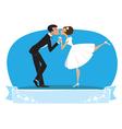 Bride groom kissing vector image