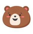 brown bear head looks straight smiling teddy bear vector image vector image
