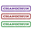 changchun watermark stamp vector image vector image