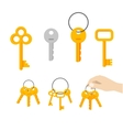 Keys bunch key hanging on ring hand vector image vector image