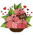 sale bouquet of flowers colored for design vector image vector image