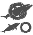 with a dolphin and a life buoy vector image vector image