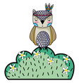 ethnic owl animal in bursh with flowers vector image