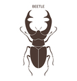 Hercules beetle Isolated insect on white vector image