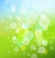 summer and spring background vector image vector image