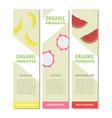 template design fruits vertical banner vector image