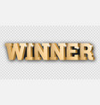 the gold 3d word winner vector image vector image