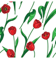 tulip pattern big vector image