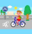 biker boy on bicycle lane vector image