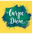Carpe diem - latin phrase means Capture the moment vector image