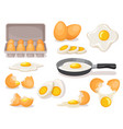 eggs set boiled and fried in skillet in carton vector image
