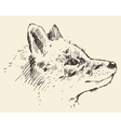 Fox head style vintage drawn sketch vector image
