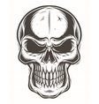 Isolated skull on white background vector image vector image