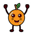 kawaii cartoon orange fruit funny character vector image