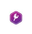 phoenix flying bird and eagle open wings logo vector image vector image