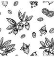 seamless pattern with jojoba vintage vector image