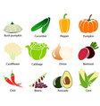 Vegetable Icons With Title vector image