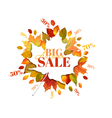 Autumn Sale - Colorful Autumn Leaves Background vector image vector image
