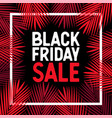 black friday sale tropical palm leaves vector image vector image