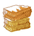 honeycomb icon bees cells wax to store honey vector image vector image