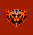 orange wild cat mascot logo vector image vector image