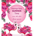 wedding roses invitation beautiful roses vector image vector image