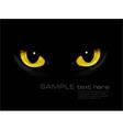 cat eyes in dark night vector image