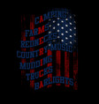 america - flag text vector image