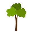 flat color tree icon vector image vector image