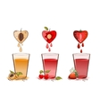 Fruits juice vector image vector image