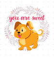 funny red dog background vector image