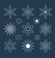 set of snowflakes on a dark background vector image vector image