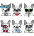 French bulldog icons II vector image vector image