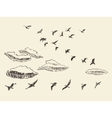 hand drawn flying birds sky clouds migratory vector image vector image